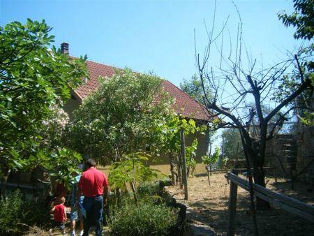 L'orto vicino casa
