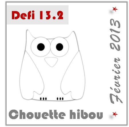 13-2-Chouette hibou