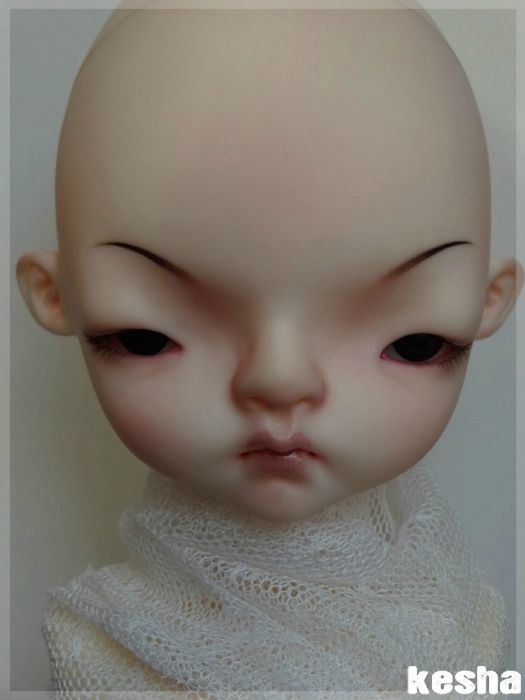 domadoll cooki4