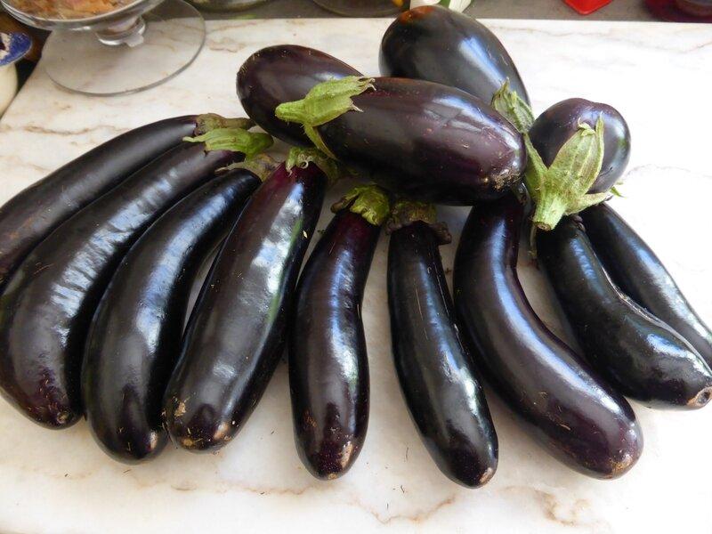 28-aubergines (3)