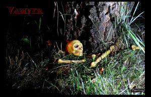 Crâne_09_léger