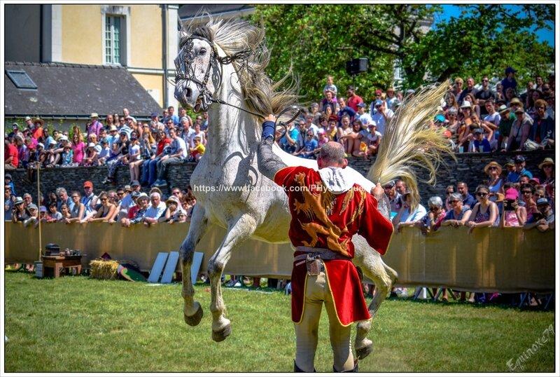 chevaux dressage medievale chateau Les ponts de cé equinoxe79