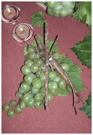 2009_10_04_graines_de_vendanges6