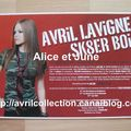 Fiche promotionnelle franaise-Sk8er Boi