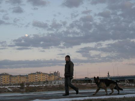 walk_under_moon_with_dog
