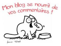 commentaires blogs