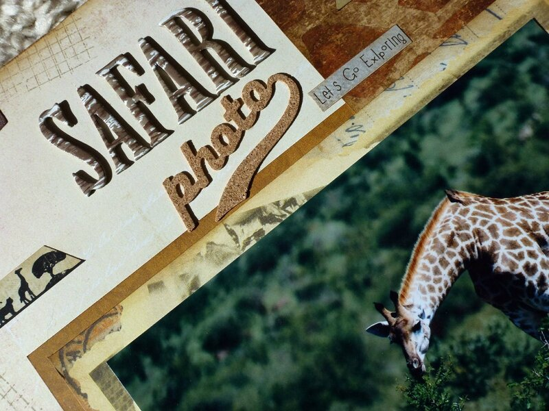 Safari-photo2