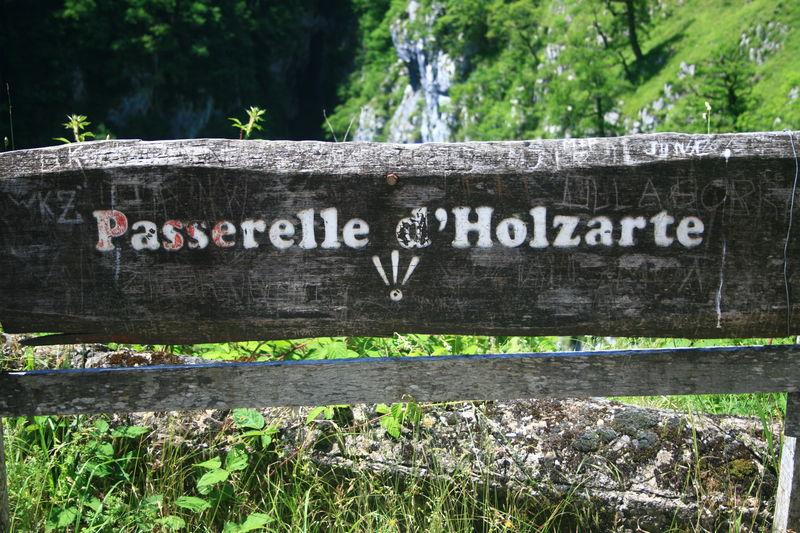 Holzarte_040