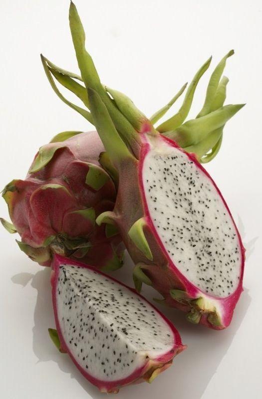 Des dr les de fruits la cuisine de tattoo - Fruit cage d amour ...