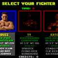 Pit-fighter - master system