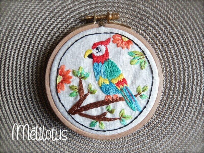 Cercle Perroquet