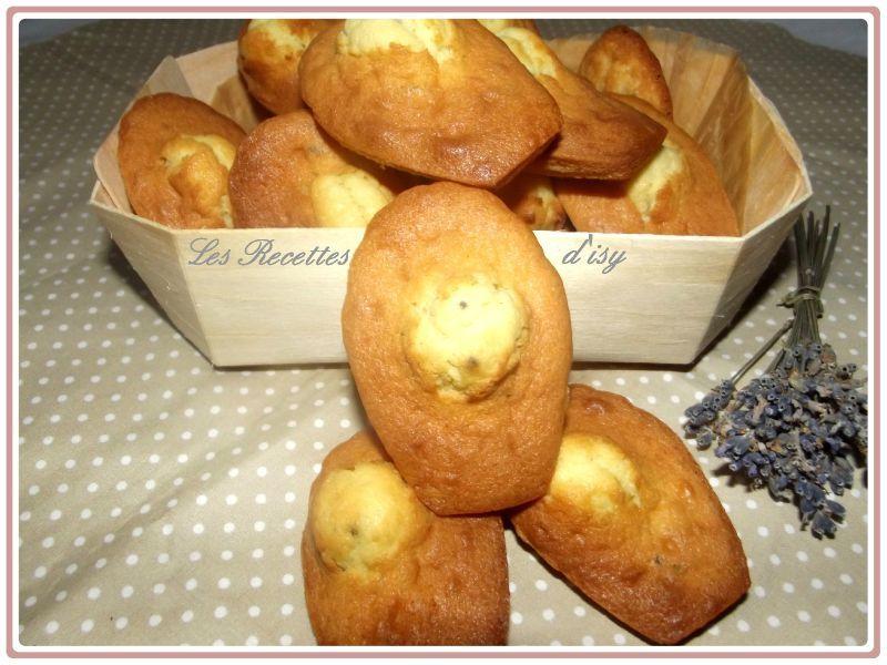 madeleine à la lavande1
