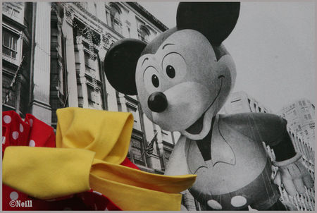 DETAIL_SAC_MICKEY