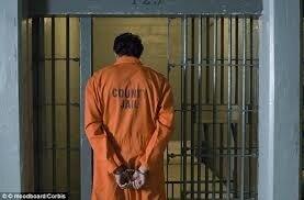"""Résultat de recherche d'images pour """"FAIRE SORTIR DE PRISON"""""""
