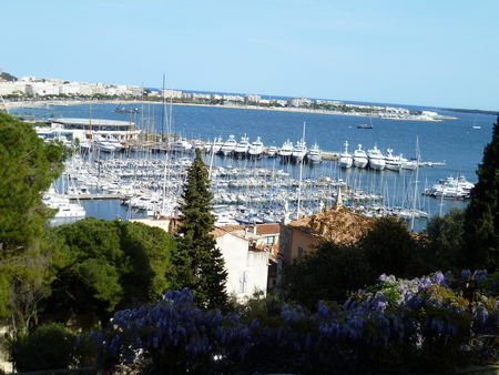 CANNES_04_11_002