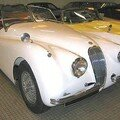 JAGUAR - XK 120 Roadster - 1955