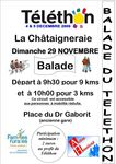 Affiche_balade_du_t_l_thon_2009_photo