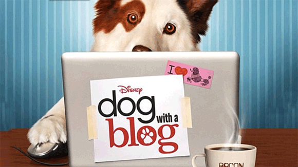 DogwithaBlog