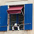 20140722 Cahors fenêtre à la vache