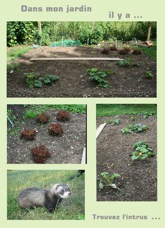 jardinnouveau