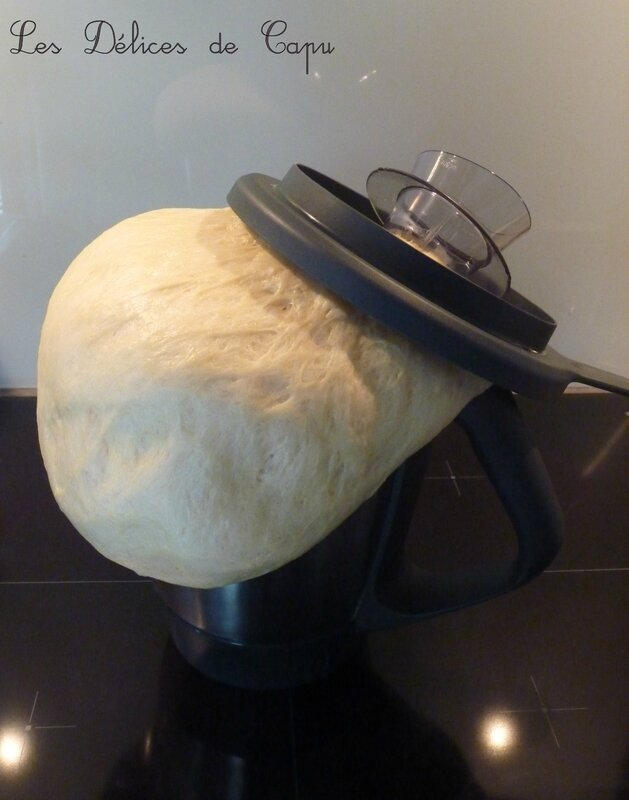 brioche thermomix2