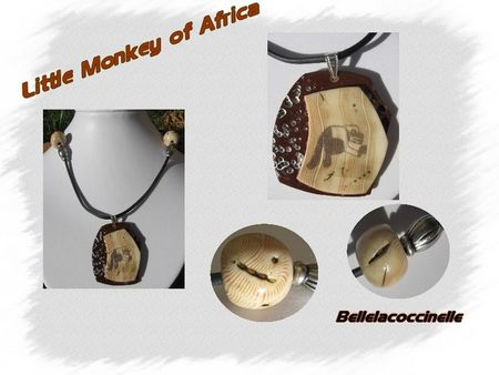 little_monkey_Africa