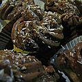 Cupcakes chocolat - agrumes