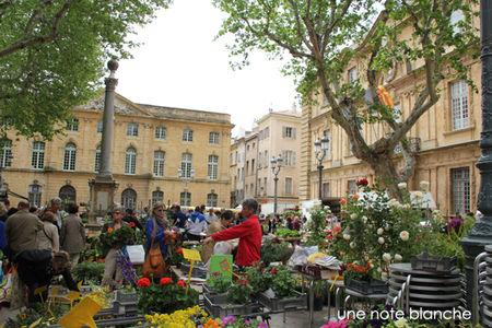 aix_en_provence_march__fleurs