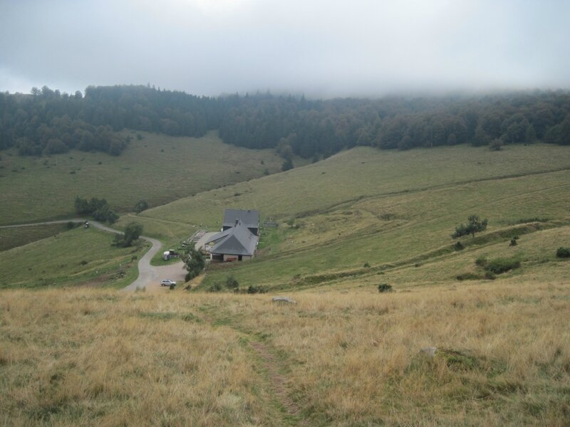 Steinberg 035
