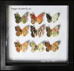 Vegan-butterfly-framed-art-paper-craft