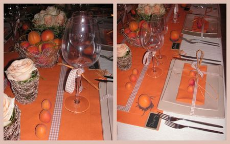 2009_07_07_table_abricots27