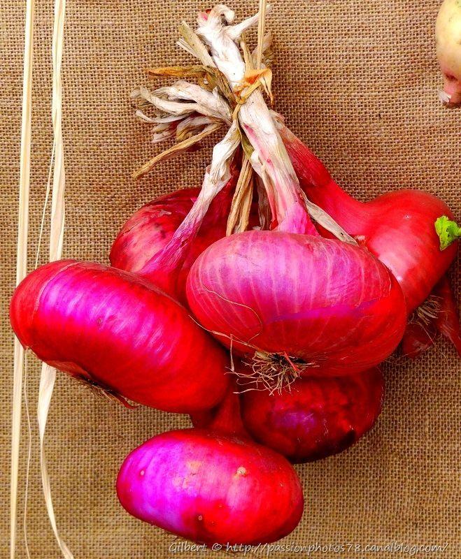 Les légumes d'autrefois (6)