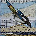 Série oiseaux #1