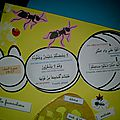 lapbook_fourmis