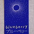 Carte postale estivale – paris et les maki de blueberry