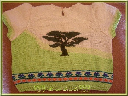 tricot_paysage_dos