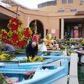 combat naval fleuri 28 fevrier 2011 004