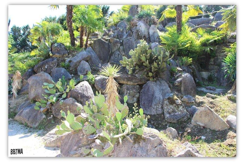 24-tropical-parc-sortie-famille-enfant-kids-bretagne-morbihan-saint-jacut-les-pins-faune-flore-tropicale-animalier-animaux-jardin-spectacle-cactus-bbtma-blog-parents-maman