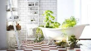 les plantes d polluantes pour la salle de bain conseils. Black Bedroom Furniture Sets. Home Design Ideas