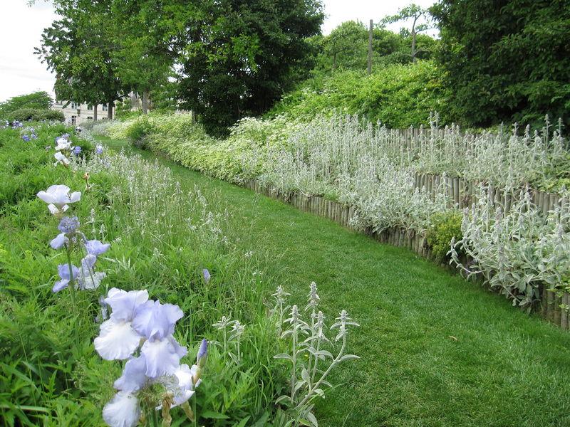 la roseraie de l 39 ev ch de blois photo de la roseraie de l 39 ev ch de blois mon jardin de. Black Bedroom Furniture Sets. Home Design Ideas