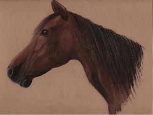 t_te_de_cheval_craie