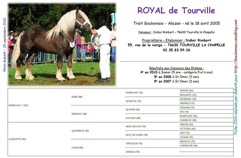 Fiche ROYAL DE TOURVILLE 2014