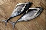 chaussures_poissons_300
