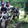 phang nga_sealand park_trekking éléphant _17