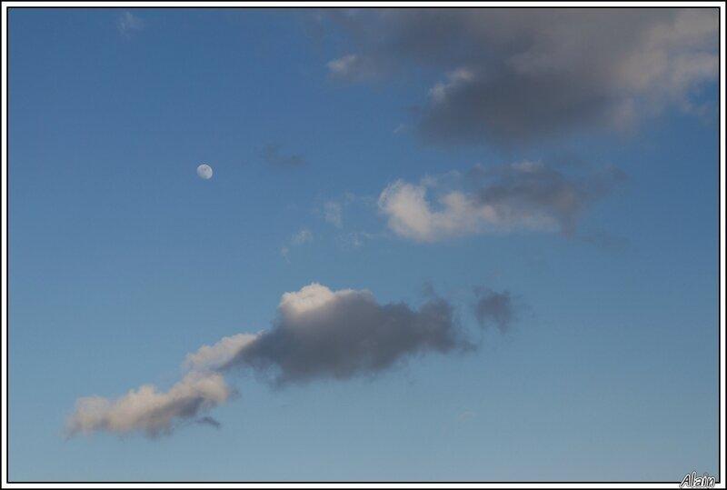 voiles sous la lune