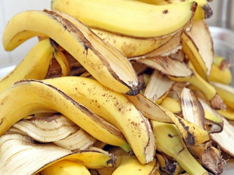 La-peau-de-banane-au-jardin-1