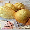 Madeleines  la vanille