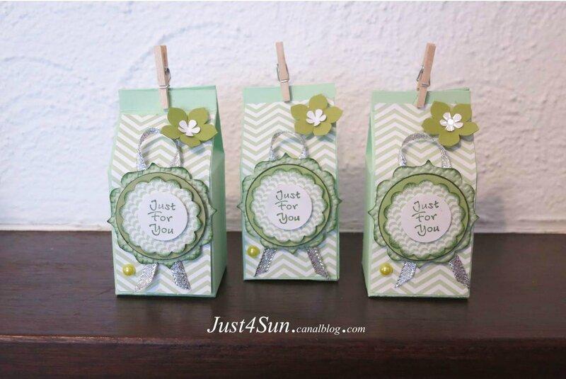 Boîtes Pigment Pistache_Just4Sun_ 3 en détail