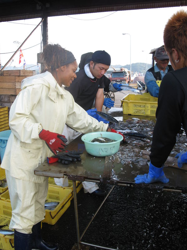 Triage du poisson