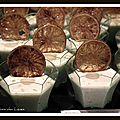 Petite crème froide de st jacques cristallines de citron vert